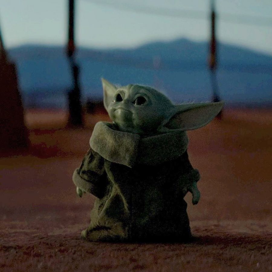 This photo is courtesy of Lucas Films.